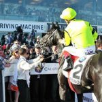 racehorse shares