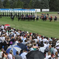 Capacity field to contest 2014 Ballarat Cup on Saturday