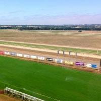 turf-track