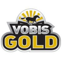 vobis-gold