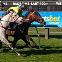 2014 Ballarat Cup Day worth $1 Million