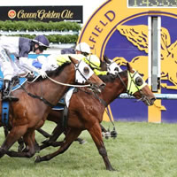 Melbourne Racing Club contributes $1.136 billion to Victorian economy