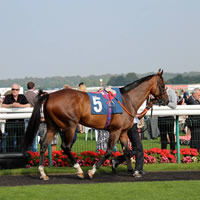 mounting-yard-pic