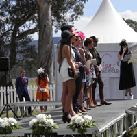 Big crowd turns out to witness Scaredymac win 2014 Pyrenees Winemakers Avoca Cup