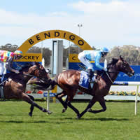 Waterhouse 4yo expected to shine in 2014 Jayco Bendigo Cup
