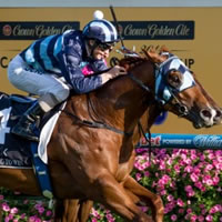 Shooting To Win brings up Magic Millions double with 2014 Caulfield Guineas win