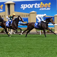 Fillies & Mares only at the Ballarat Turf Club today