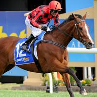 Kevin Forrester wins 2014 Sportsbet.com.au Ballarat Cup on Mujudale