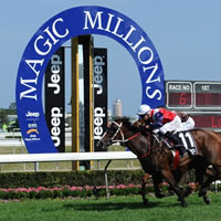 Wicked Intent & Hijack Hussy head 2015 Magic Millions feature race odds