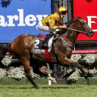 Black Caviar Lightning ignites the 2015 Global Sprint Challenge