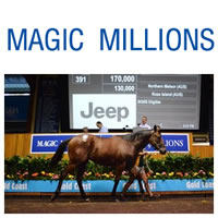 Pair of outstanding colts share the honours at March Yearling Sale