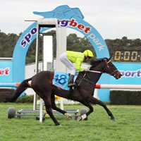 A pat on the head leads to Imaging at Warrnambool May Carnival