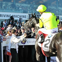 ATB's Dandino and Taiyoo ready for Caulfield on Saturday