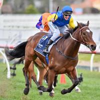 Black Heart Bart wins Memsie Stakes in brilliant fashion