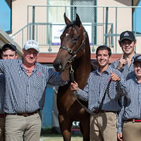 Dundeel Colt tops 2019 Gold Coast National Yearling Sale